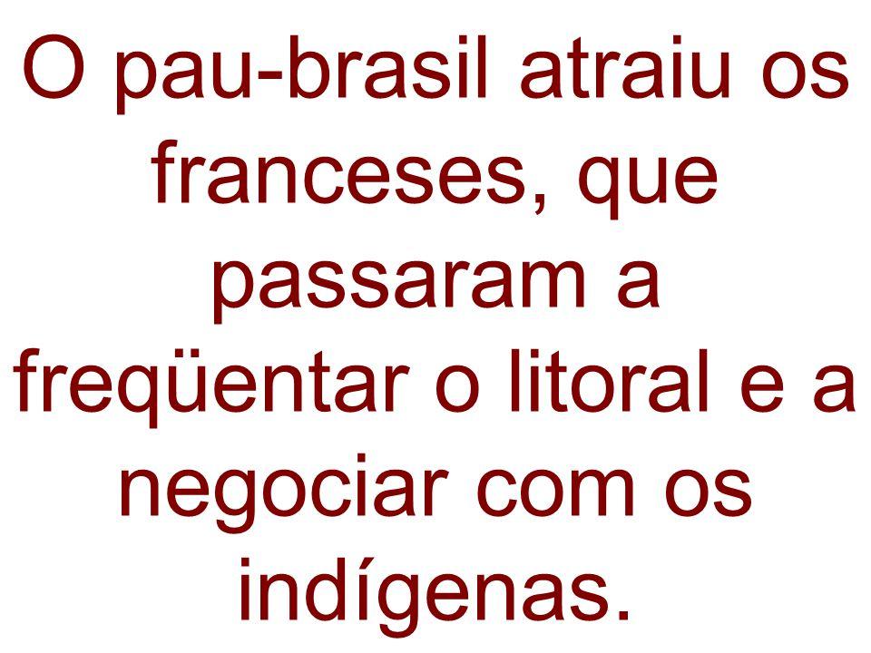 O pau-brasil atraiu os franceses, que passaram a freqüentar o litoral e a negociar com os indígenas.