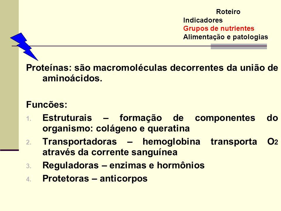 Proteínas: são macromoléculas decorrentes da união de aminoácidos.