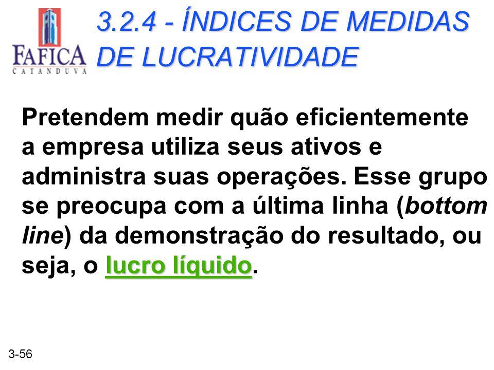 3.2.4 - ÍNDICES DE MEDIDAS DE LUCRATIVIDADE