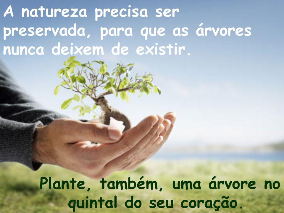 A natureza precisa ser preservada, para que as árvores nunca deixem de existir.