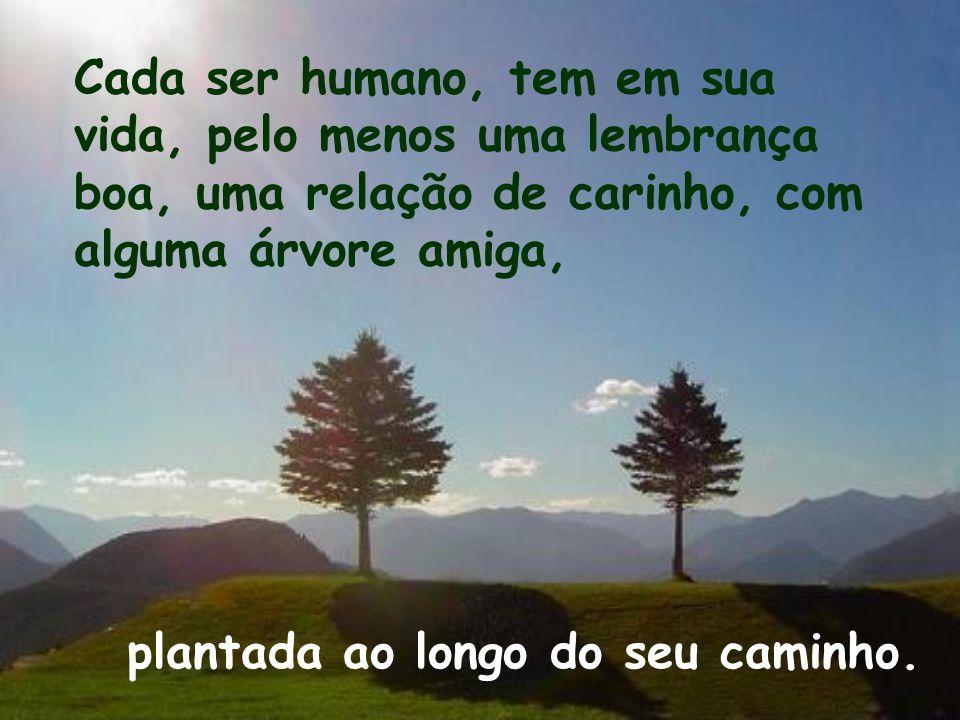 Cada ser humano, tem em sua vida, pelo menos uma lembrança boa, uma relação de carinho, com alguma árvore amiga,