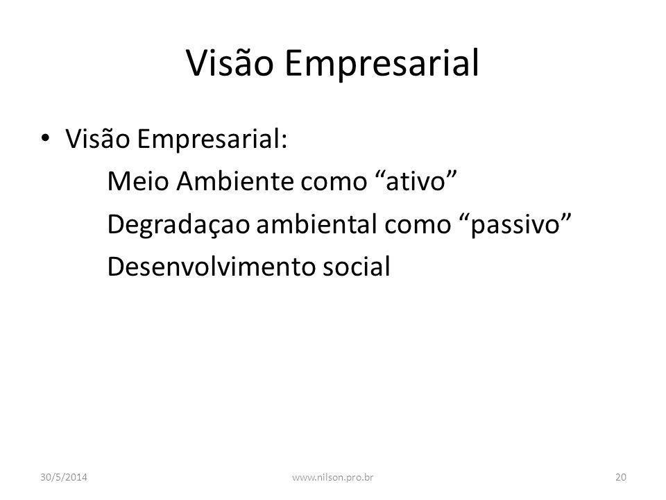 Visão Empresarial Visão Empresarial: Meio Ambiente como ativo