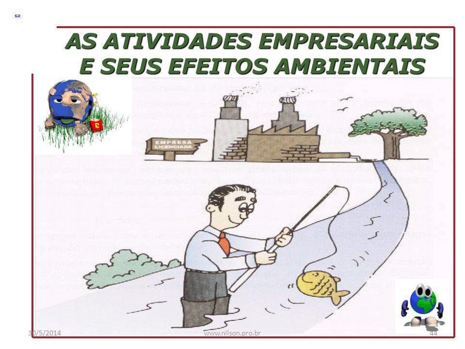 AS ATIVIDADES EMPRESARIAIS E SEUS EFEITOS AMBIENTAIS