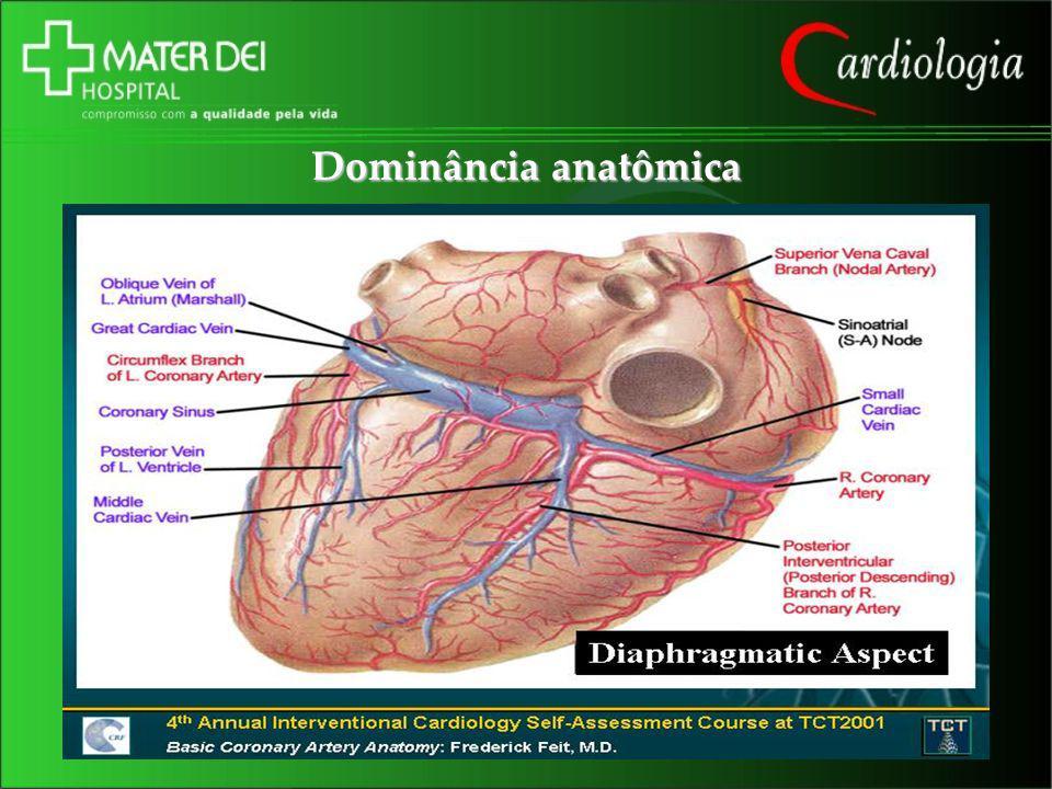 Dominância anatômica