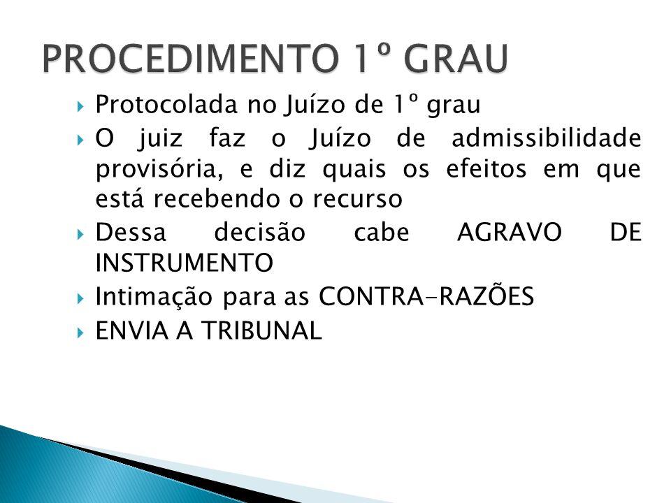PROCEDIMENTO 1º GRAU Protocolada no Juízo de 1º grau