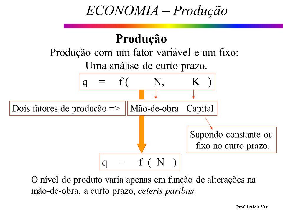 Produção Produção com um fator variável e um fixo: