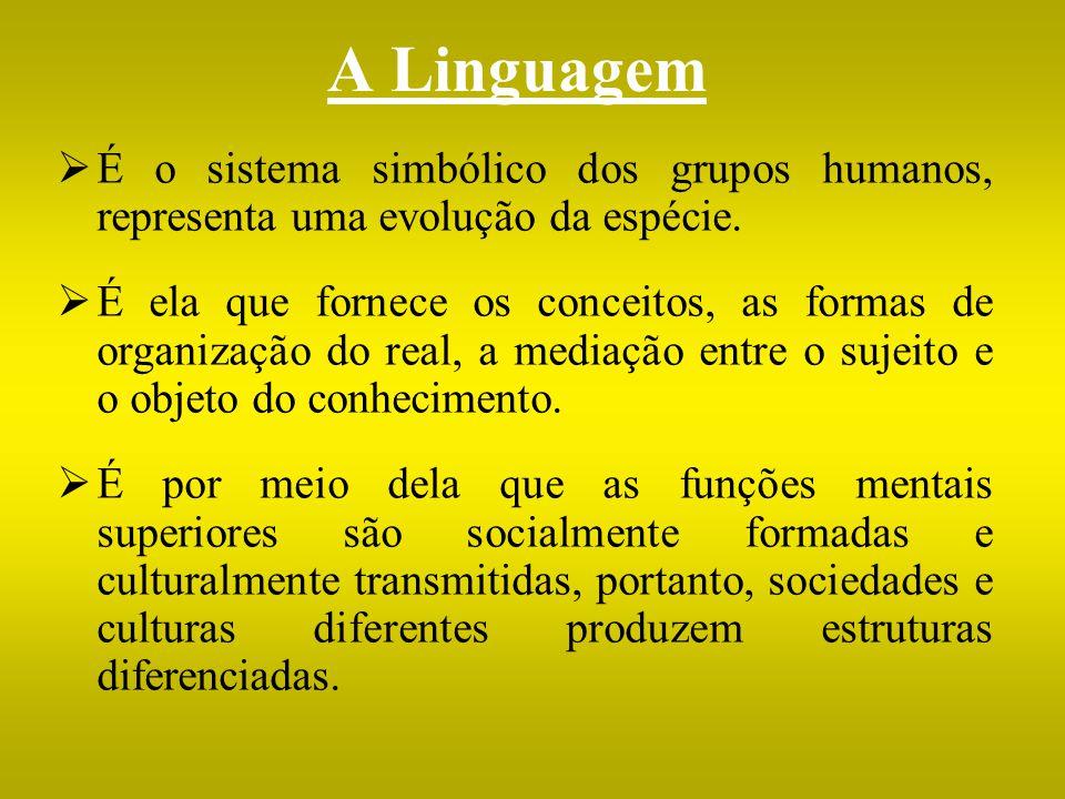 A Linguagem É o sistema simbólico dos grupos humanos, representa uma evolução da espécie.
