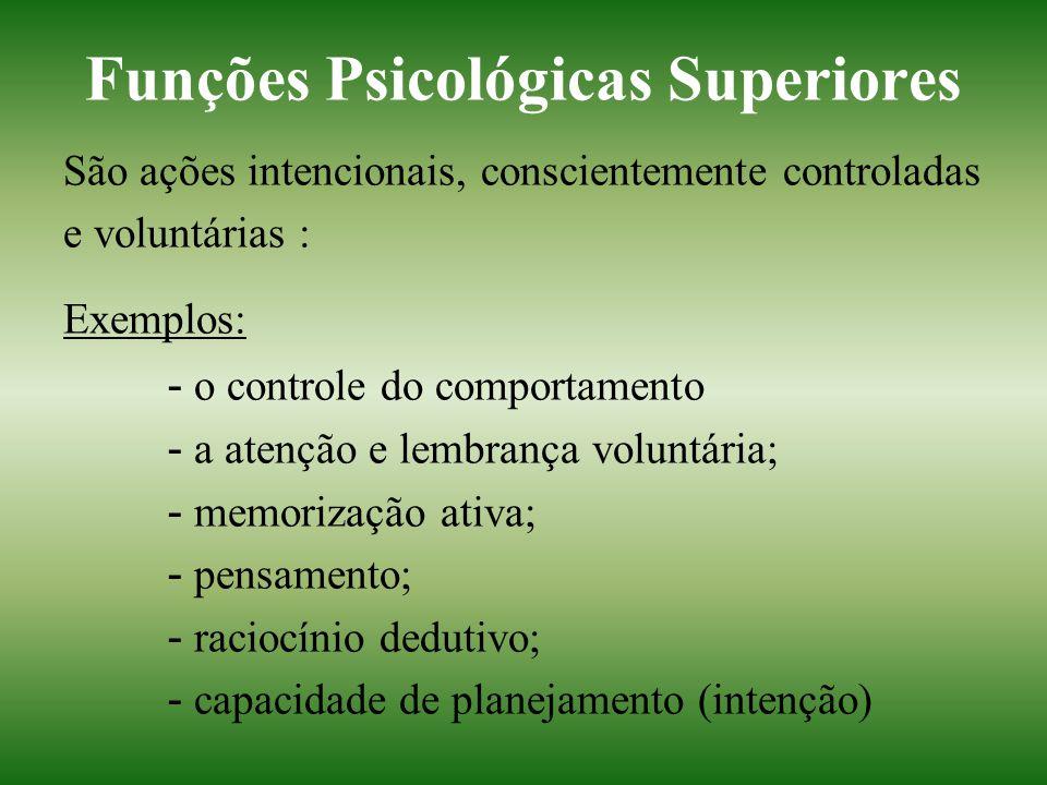 Funções Psicológicas Superiores