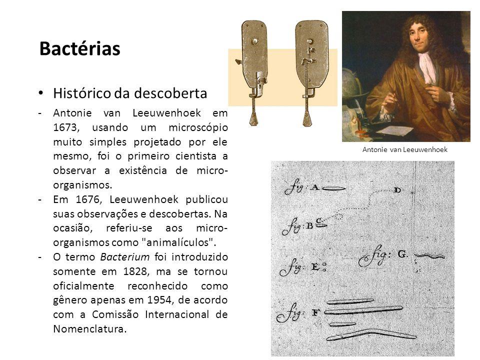 Bactérias Histórico da descoberta