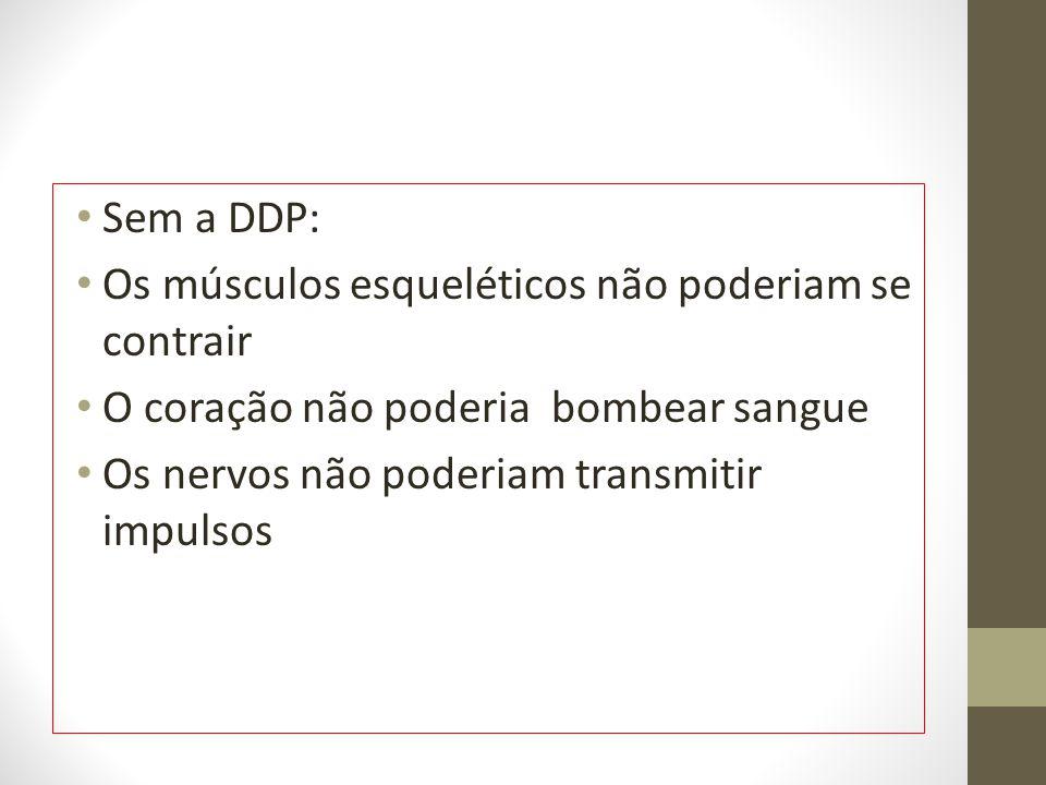 Sem a DDP: Os músculos esqueléticos não poderiam se contrair. O coração não poderia bombear sangue.