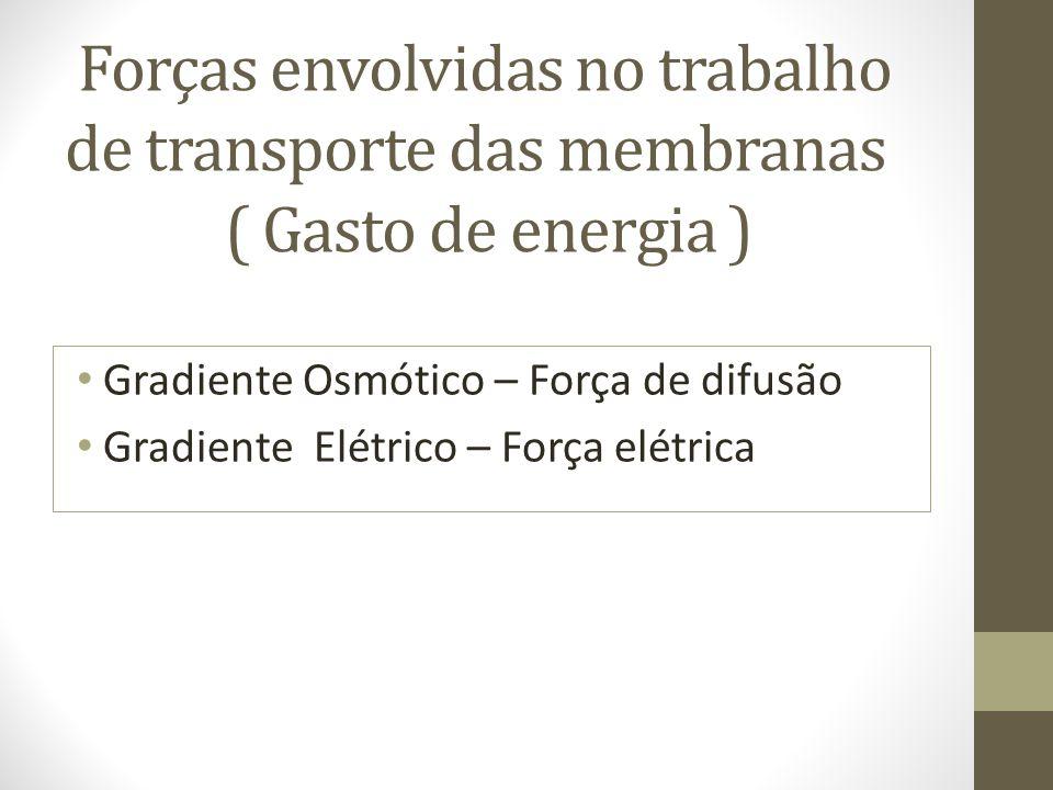 Forças envolvidas no trabalho de transporte das membranas ( Gasto de energia )