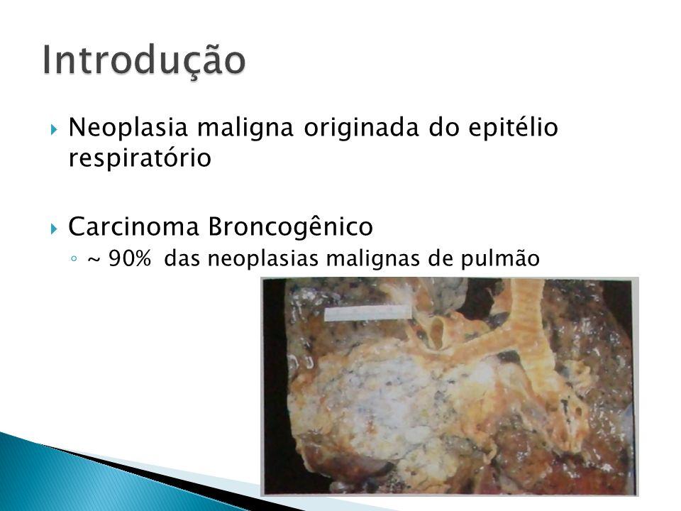 Introdução Neoplasia maligna originada do epitélio respiratório