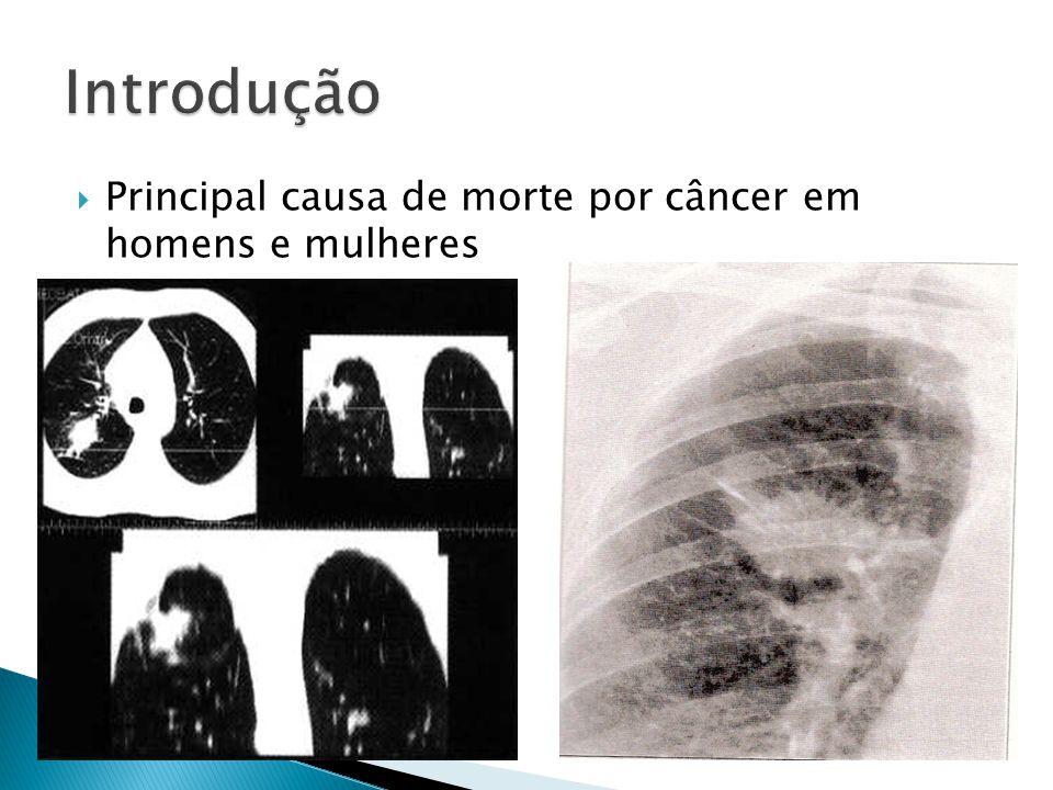 Introdução Principal causa de morte por câncer em homens e mulheres