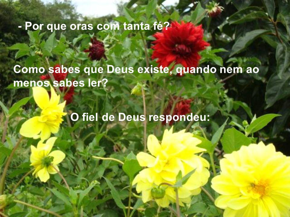 - Por que oras com tanta fé