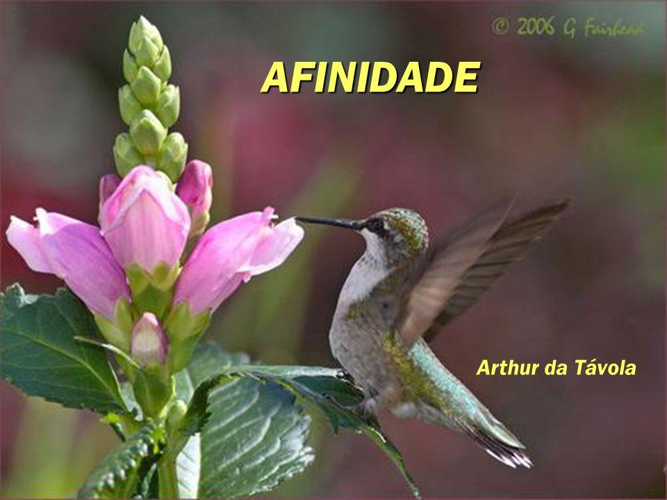 AFINIDADE Arthur da Távola