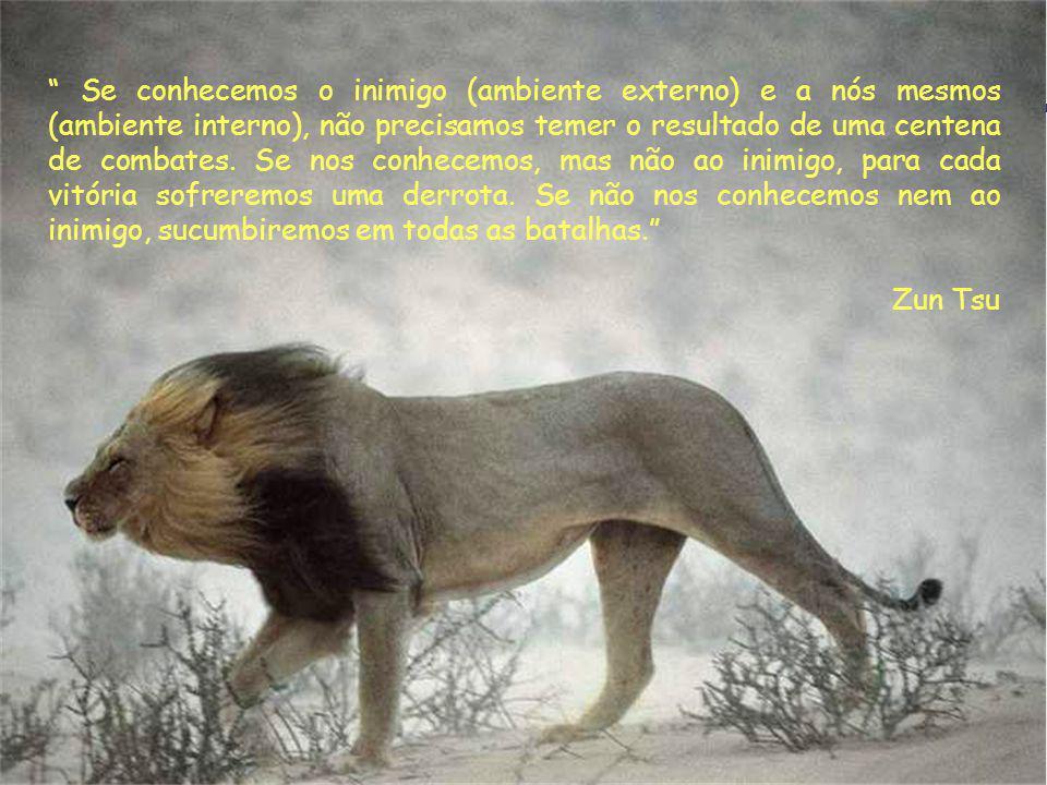Se conhecemos o inimigo (ambiente externo) e a nós mesmos (ambiente interno), não precisamos temer o resultado de uma centena de combates. Se nos conhecemos, mas não ao inimigo, para cada vitória sofreremos uma derrota. Se não nos conhecemos nem ao inimigo, sucumbiremos em todas as batalhas.