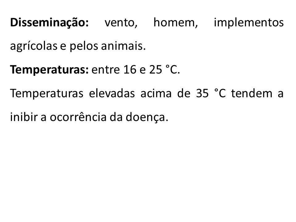 Disseminação: vento, homem, implementos agrícolas e pelos animais.