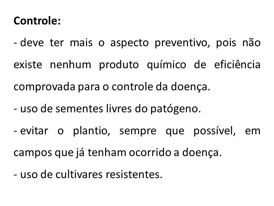 Controle: deve ter mais o aspecto preventivo, pois não existe nenhum produto químico de eficiência comprovada para o controle da doença.