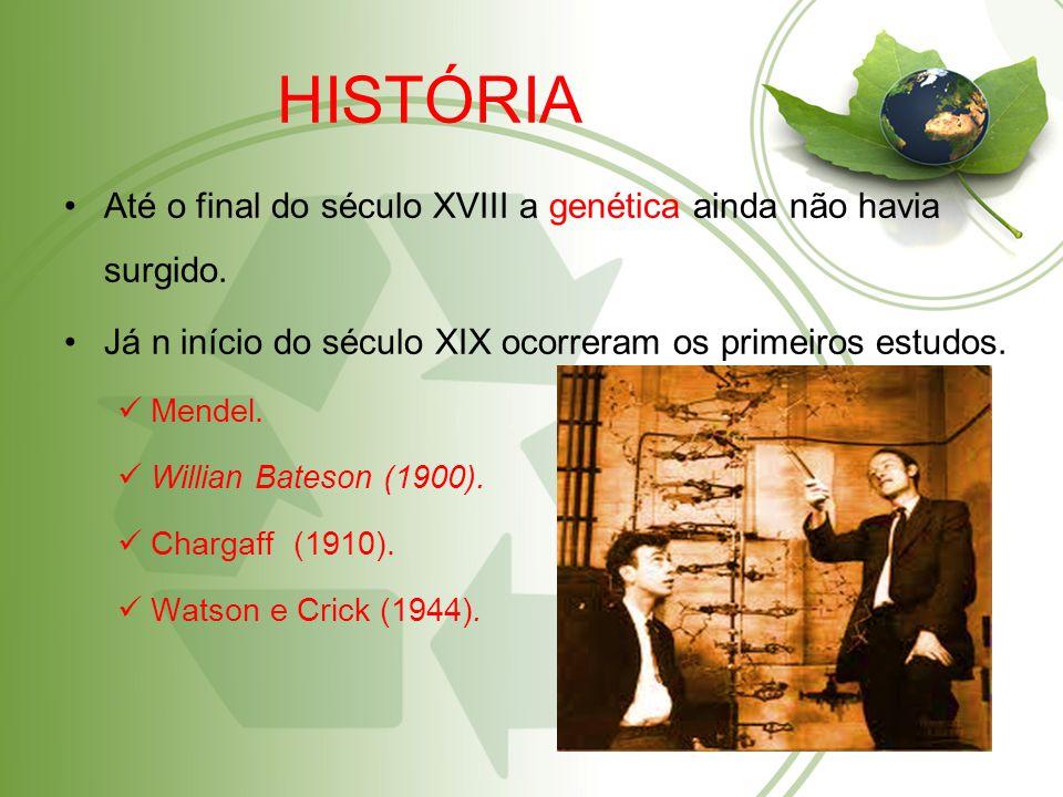 HISTÓRIA Até o final do século XVIII a genética ainda não havia surgido. Já n início do século XIX ocorreram os primeiros estudos.