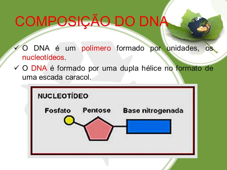COMPOSIÇÃO DO DNA O DNA é um polímero formado por unidades, os nucleotídeos.
