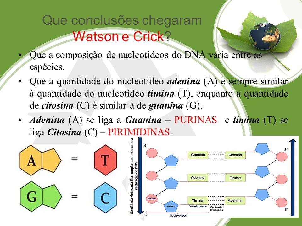 Que conclusões chegaram Watson e Crick