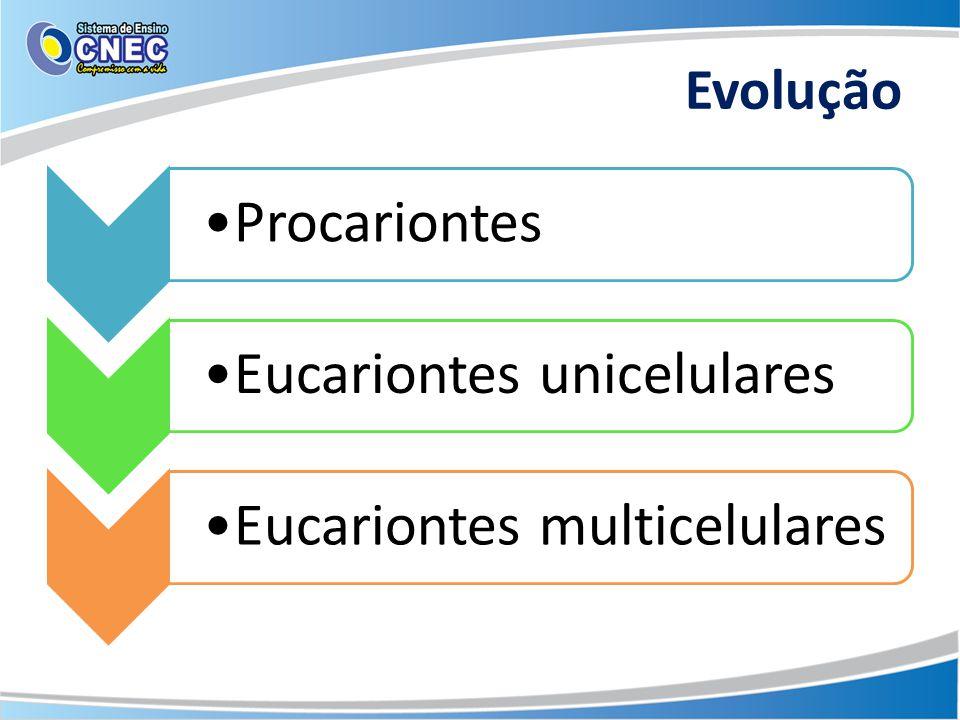 Evolução Procariontes Eucariontes unicelulares