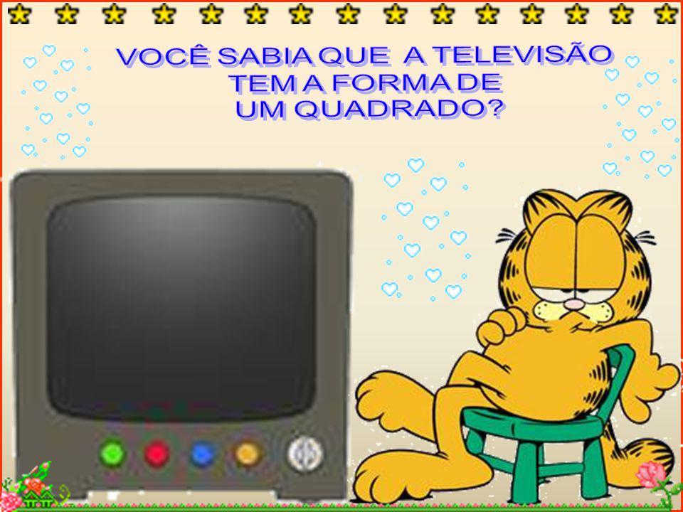 VOCÊ SABIA QUE A TELEVISÃO