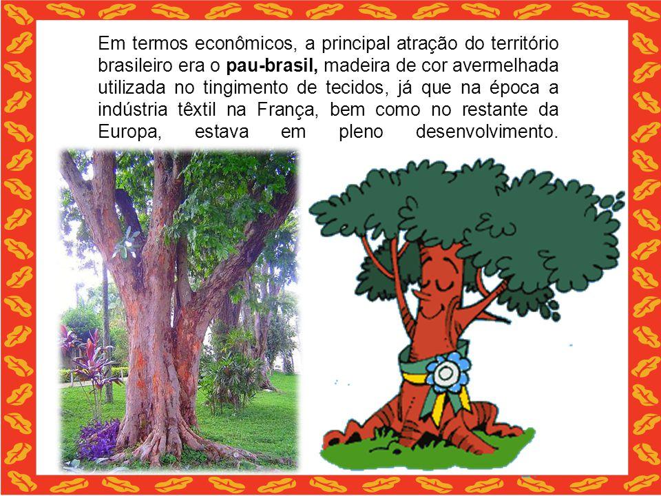 Em termos econômicos, a principal atração do território brasileiro era o pau-brasil, madeira de cor avermelhada utilizada no tingimento de tecidos, já que na época a indústria têxtil na França, bem como no restante da Europa, estava em pleno desenvolvimento.
