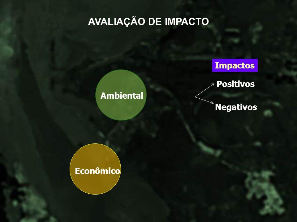AVALIAÇÃO DE IMPACTO Impactos Ambiental Positivos Negativos Econômico