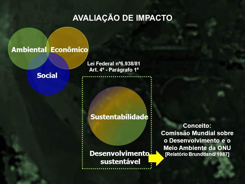 AVALIAÇÃO DE IMPACTO Econômico Social Ambiental Sustentabilidade