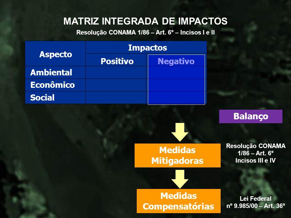 MATRIZ INTEGRADA DE IMPACTOS
