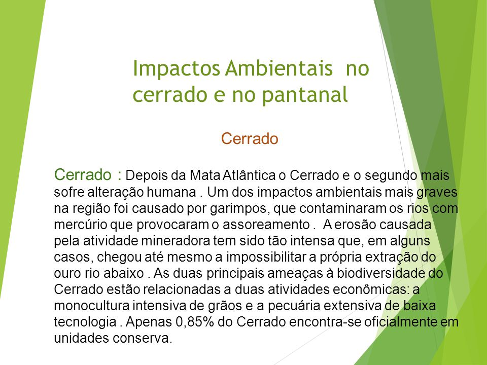 Impactos Ambientais no cerrado e no pantanal