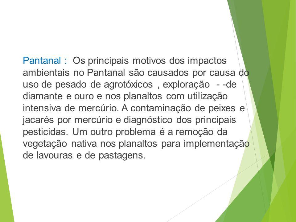 Pantanal : Os principais motivos dos impactos ambientais no Pantanal são causados por causa do uso de pesado de agrotóxicos , exploração - -de diamante e ouro e nos planaltos com utilização intensiva de mercúrio. A contaminação de peixes e jacarés por mercúrio e diagnóstico dos principais pesticidas.
