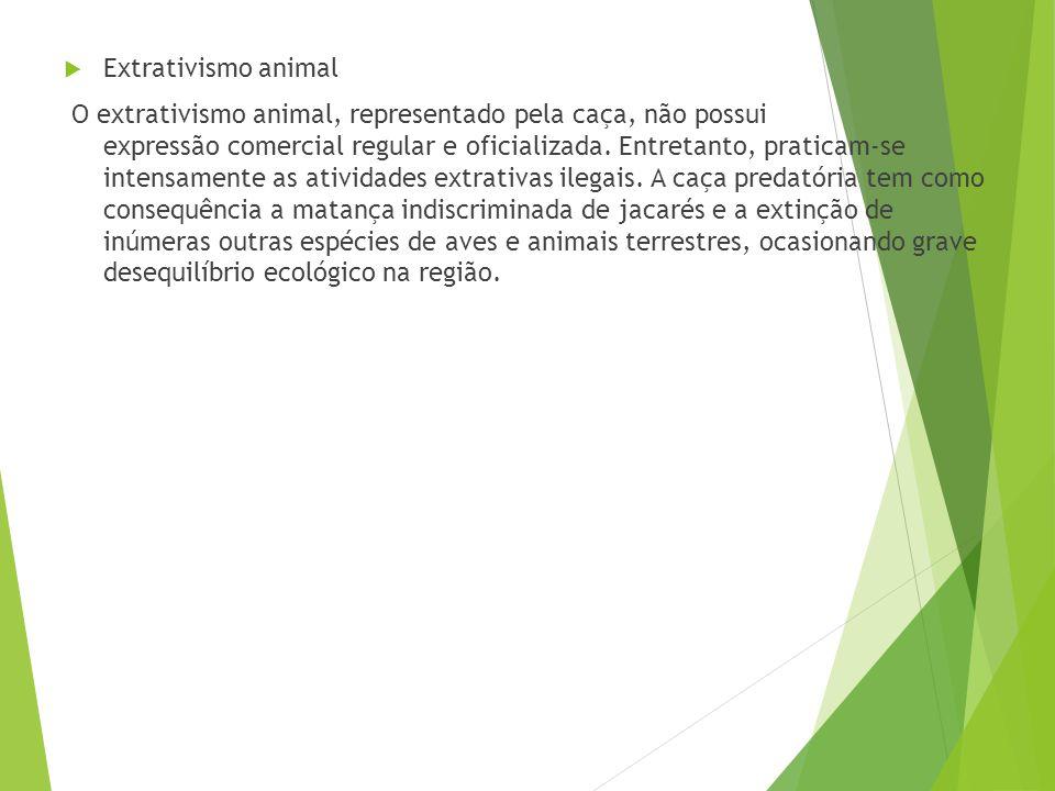 Extrativismo animal
