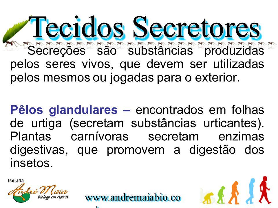 Tecidos Secretores Secreções são substâncias produzidas pelos seres vivos, que devem ser utilizadas pelos mesmos ou jogadas para o exterior.