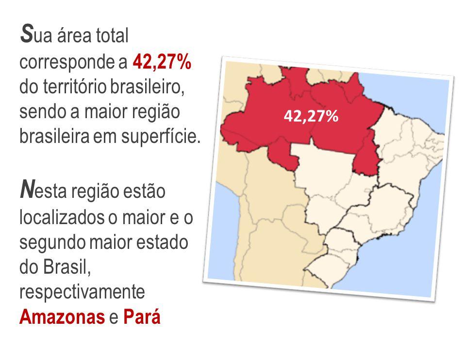 Sua área total corresponde a 42,27% do território brasileiro, sendo a maior região brasileira em superfície.