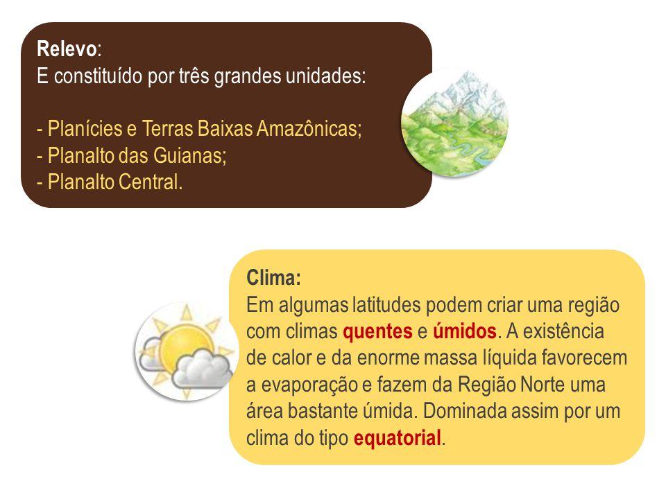 Relevo: E constituído por três grandes unidades: - Planícies e Terras Baixas Amazônicas; - Planalto das Guianas;
