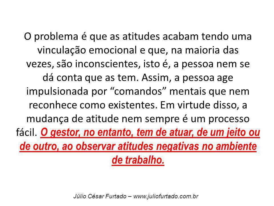 Júlio César Furtado – www.juliofurtado.com.br