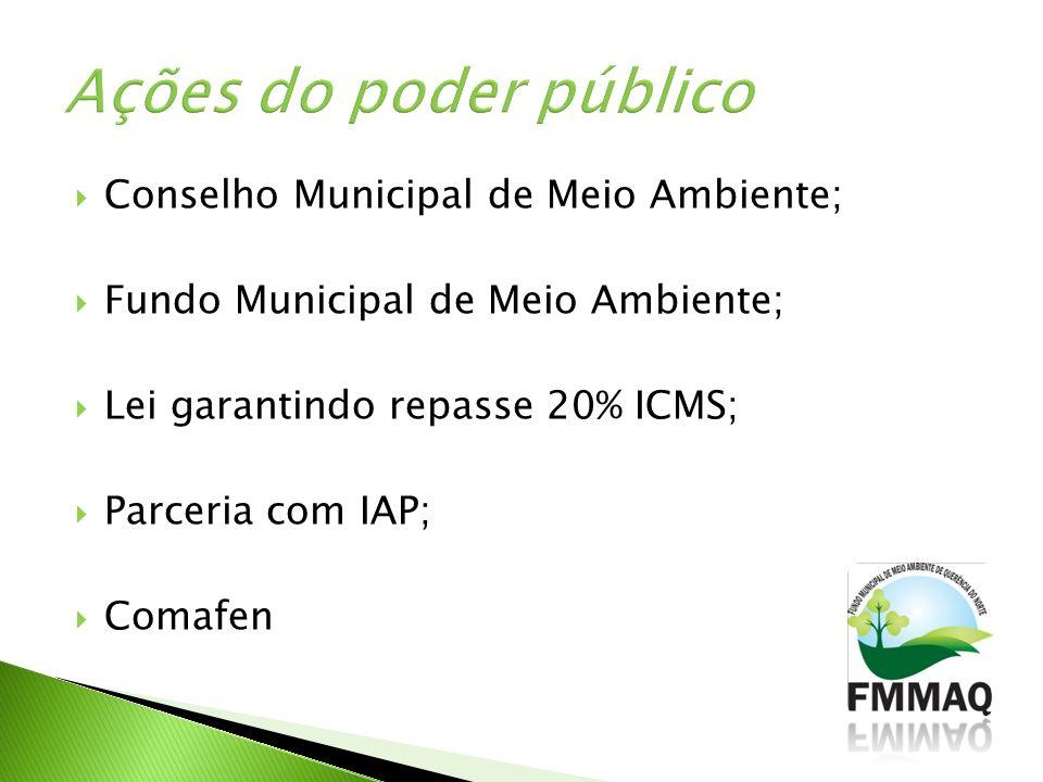 Ações do poder público Conselho Municipal de Meio Ambiente;