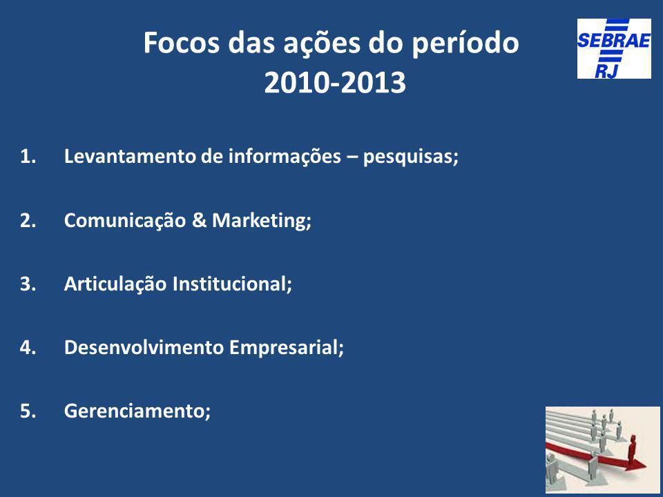 Focos das ações do período 2010-2013