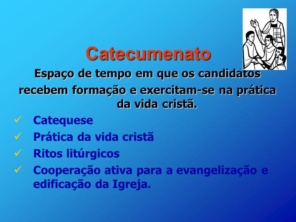 Os Mandamentos Na Vida Cristã: A ORGANIZAÇÃO DO PROCESSO CATECUMENAL