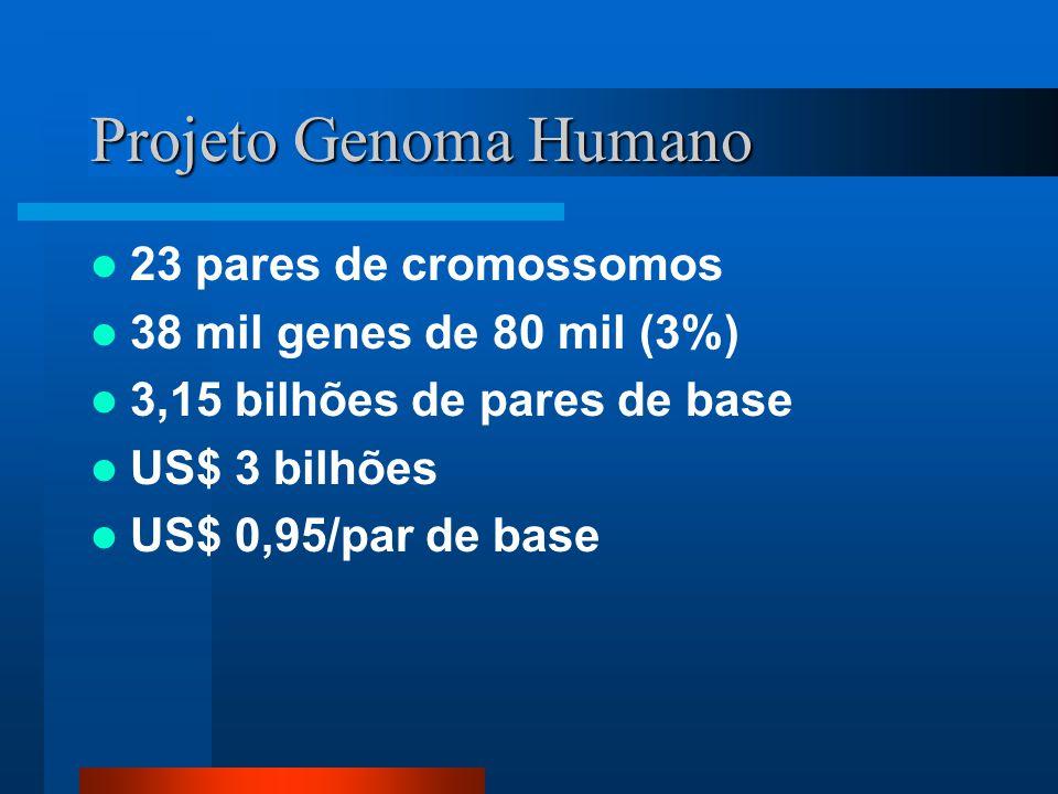 Projeto Genoma Humano 23 pares de cromossomos