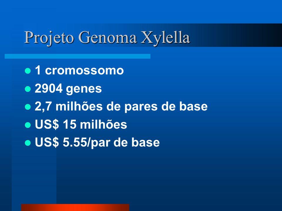 Projeto Genoma Xylella