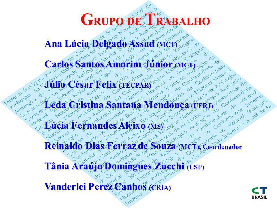 GRUPO DE TRABALHO Ana Lúcia Delgado Assad (MCT)