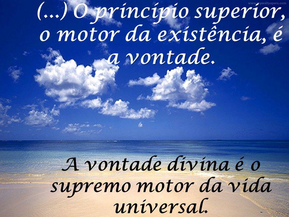 (...) O princípio superior, o motor da existência, é a vontade.