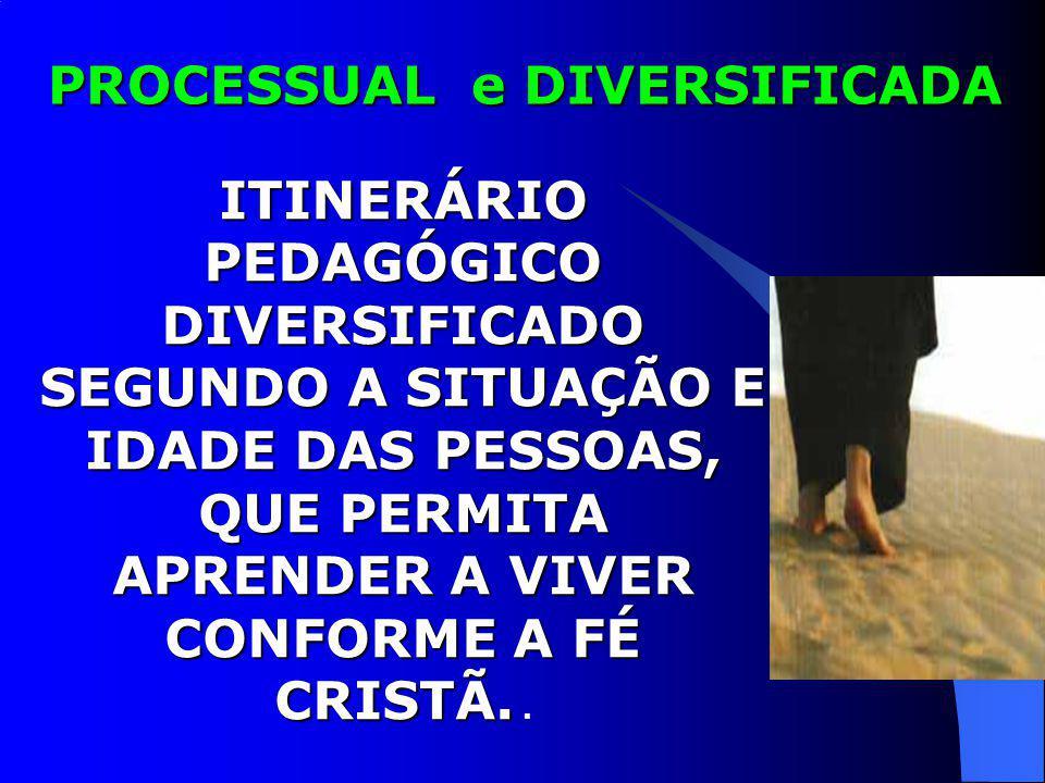 PROCESSUAL e DIVERSIFICADA