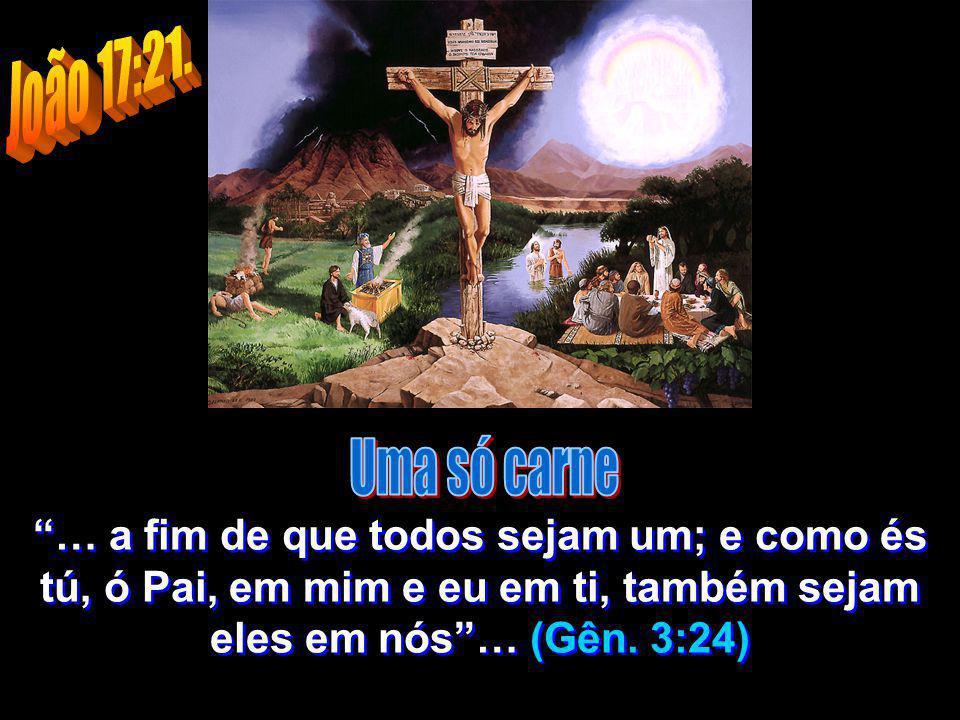 João 17:21. Uma só carne.