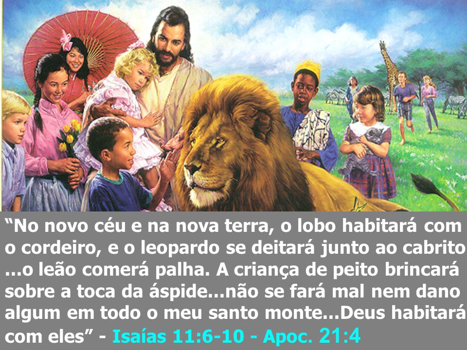 No novo céu e na nova terra, o lobo habitará com