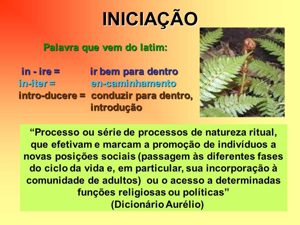 INICIAÇÃO Palavra que vem do latim: in - ire = ir bem para dentro