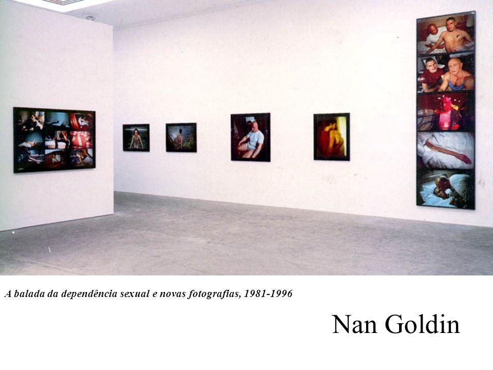 A balada da dependência sexual e novas fotografias, 1981-1996